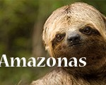 movie_amazonas1