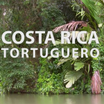 Costa Rica – Tortuguero – HD Video