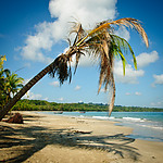 Costa Rica / Cahuita und Manzanillo / Südliche Karibik | HD-Video