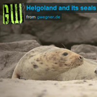 helgoland-movie-teaser