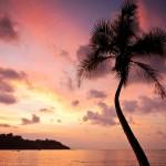 Eine Reise nach Costa Rica gewinnen