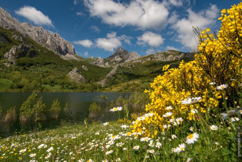 Wunderschöne Vegetation - Frühsommer in Nordspanien