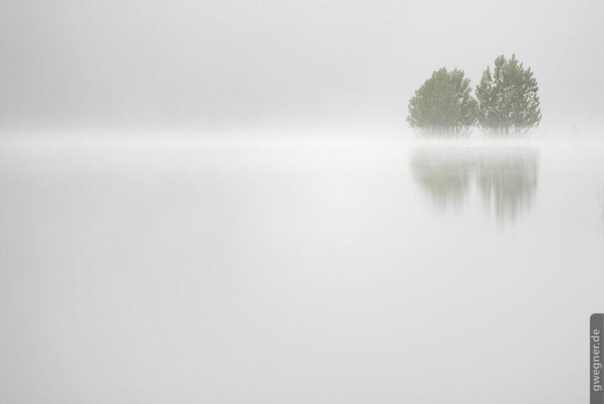 Frühmorgendlicher Nebel über einem See