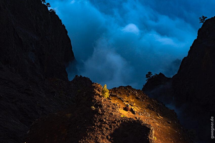 Lichtspiele über den Wolken (D750, Sigma Art 85mm)