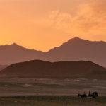 Rückkehr der Nomaden aus der Wüste
