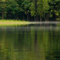 Igapós, Amazonien, Brasilien
