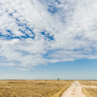 Am Rand der Makgadikgadi-Pans