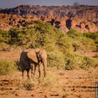 Tuli-Block, Botswana