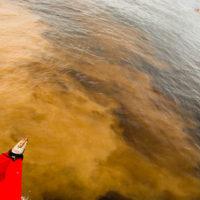 Zusammenfluss von Rio Negro und Rio Solimoes - Manaus, Brasilien