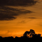 Sonnenaufgang über dem Amazonas