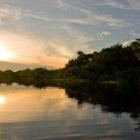 Mit dem Kanu durch die Igapós und Igarapés