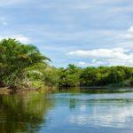 Marimbús, das Pantanal der Chapada