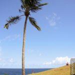 Salvador - Idylle unter Palmen