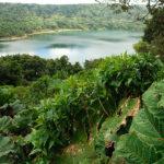 Lagoa dos Botos - der zweite Krater des Poas