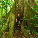 Arenal National Park - leider gibt es kaum noch solche Riesen!
