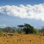 Plötzlich Steppe - Blick auf den Vulcán Miravalles