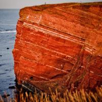 Die roten Felsen Helgolands im warmen Licht der aufgehenden Sonne