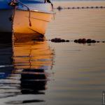 Boote auf dem Schaproder Bodden