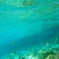 Paradise Island, Dominikanische Republik