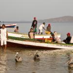Die Fischer kehren morgens mit ihren Fängen zurück
