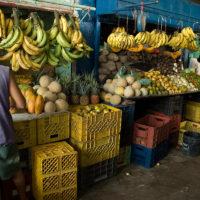 Leckeres Obst und Gemüse im Überfluss!