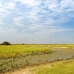 Ewige Weiten - Los Llanos