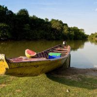 Mit dem Kanu durch die Llanos