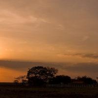 Abendstimmung in den Llanos