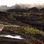 Immer wieder ziehen Wolken über den Roraima und erzeugen eine gespenstische Stimmung