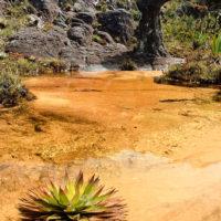 Wunderschöner Roraima